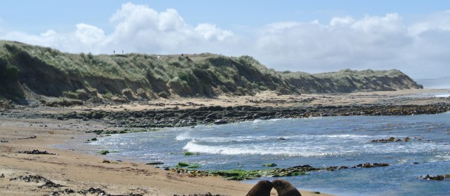 The Catlins: The Southern End of the Southern Island