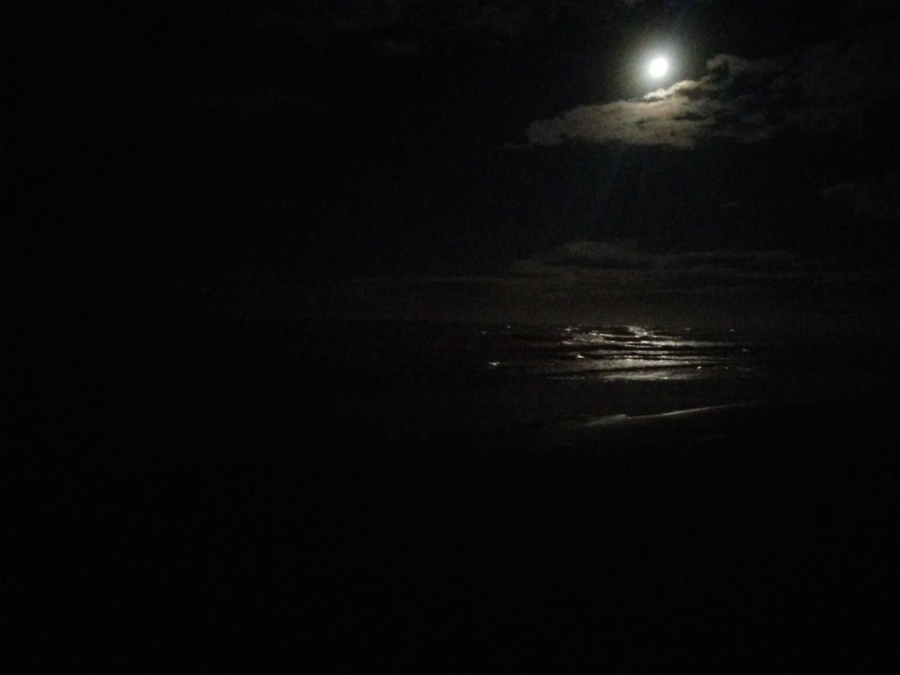 Ohope at night